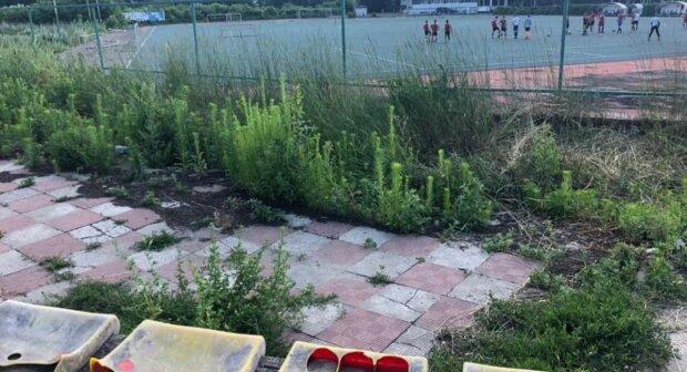 """""""Немов у нетрях"""": в мережі показали, на що перетворився стадіон у Харкові, фото"""