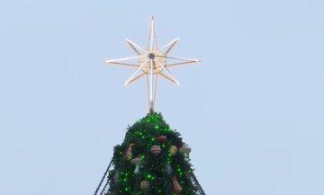 В Киеве решили раньше времени демонтировать главную елку: кадры происходящего на площади