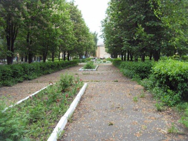 """Опасные существа заполонили парк на Одесчине, фото: """"Яд токсичен для..."""""""