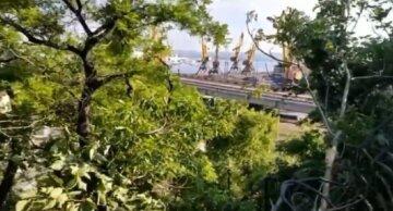 """У центрі Одеси іномарка знесла огорожі і вилетіла до моря: авто """"зависло"""" над портом"""