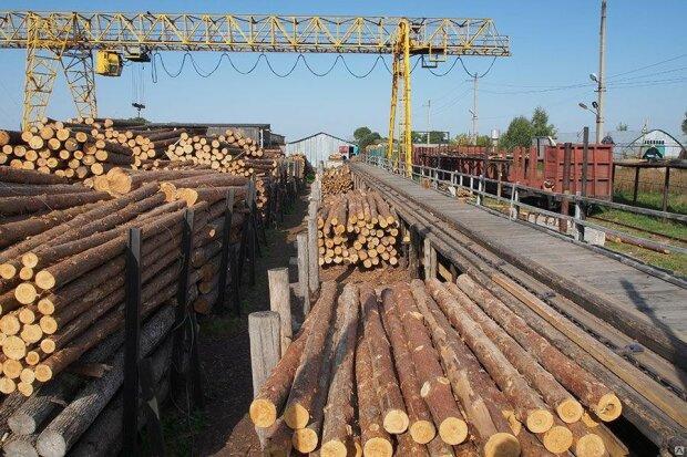контрабанда, древесина, железная дорога, вагоны