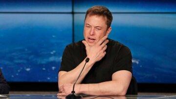 Засунь ее куда поглубже: Илон Маск сцепился с дайвером, будет суд