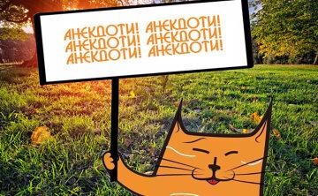 park-polyana-derevo-solnce-640×394