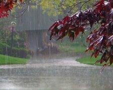 ливень, дождь, погода