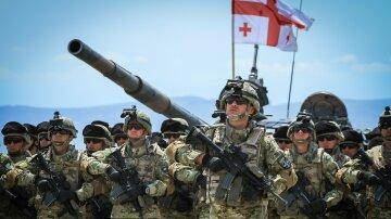 грузинская армия грузия нато