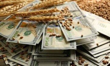"""Всплыли новые факты коррупции в Налоговой: """"отмыто"""" десятки миллионов"""
