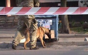 Дванадцять вибухів прогриміло в Харківській області: знищені боєприпаси, деталі