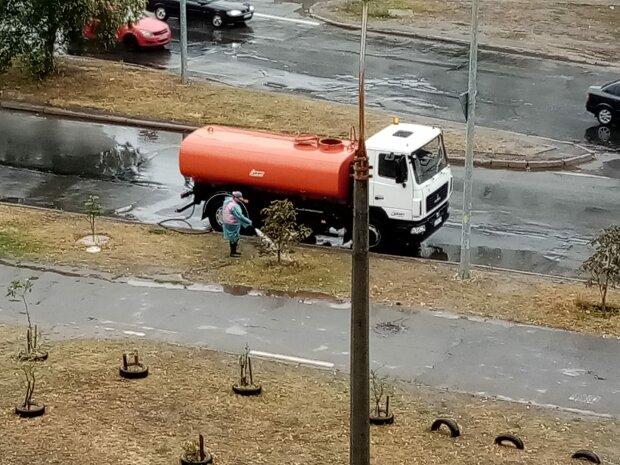 """Київські комунальники полили дерева під час дощу: """"Процес значно прискорюється"""""""