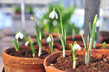 Погода в Украине 28 марта