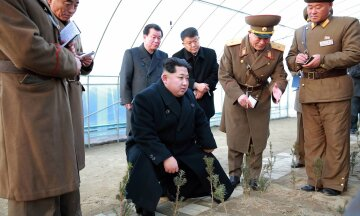 лидер КНДР Ким Чен Ын и елочки
