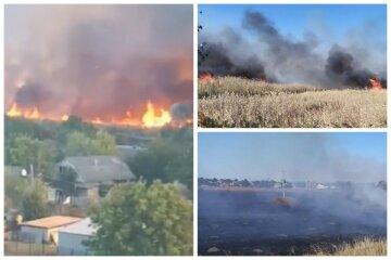 Пожежа спалахнула в Балаклії і підібралася до житлових будинків: відео з місця НП