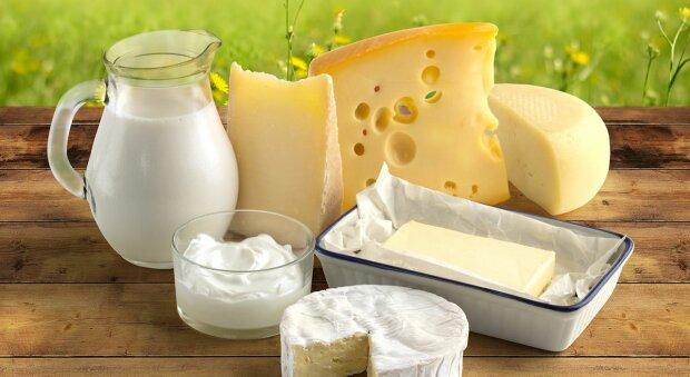 молочные продукты, молочная корзина