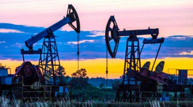 недра, нефть