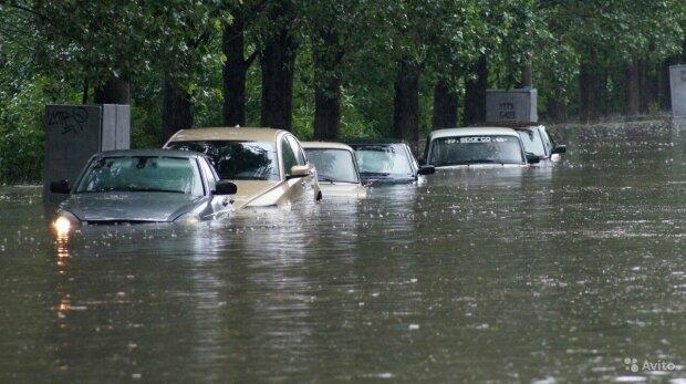 Прикарпатье ушло под воду, ситуация критическая: фото разрушительной стихии
