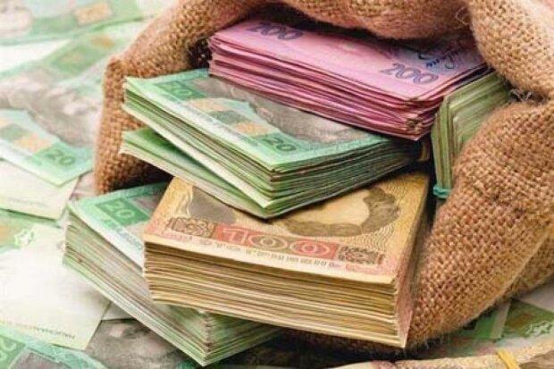З чого складається бюджет України: склад доходів