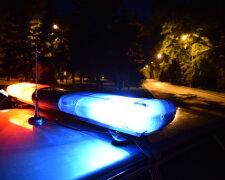 полиция мигалки