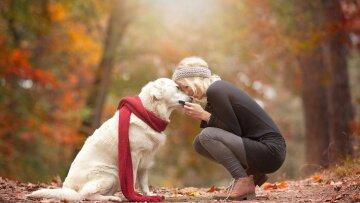 Нова схема шахраїв: під загрозою власники домашніх тварин