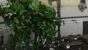 В Одеській області блискавка влучила в електролічильник: почалася пожежа, кадри
