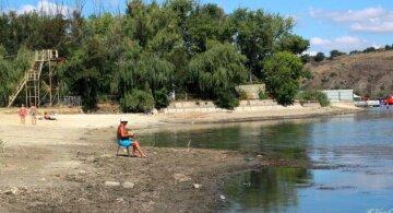 """""""А в том году тут купались дети"""": оккупанты довели Донбасс до экокатастрофы, фото"""