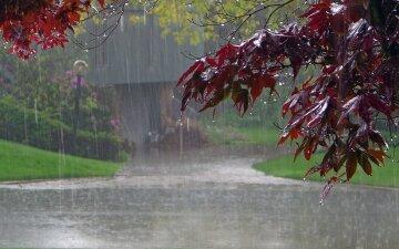 погода на июль 2018, дождь