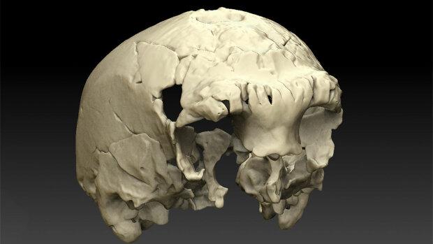 Вчені вийшли на слід невідомого предка людини – фото