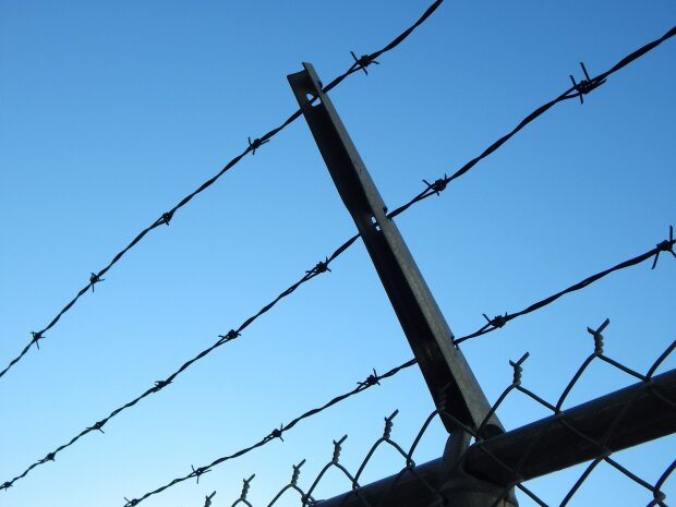 barbed-wire-482608_1280