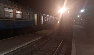 На Харьковщине мужчина упал под электричку, фото: очевидцы выдали детали ЧП