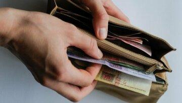 гривна, деньги, кошелек
