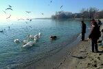весна погода озеро прогулянка