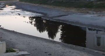 """""""Ми просимо"""": харків'яни звернулися за допомогою до влади через річку, подробиці"""