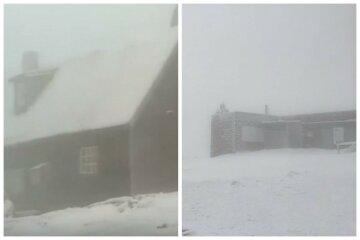 Град і травневий сніг розривають Україну, стихія обрушилася від Донбасу до Карпат: кадри аномалії