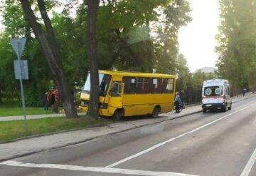 Маршрутка з пасажирами протаранила дерево, кадри ДТП: що відомо про долю людей
