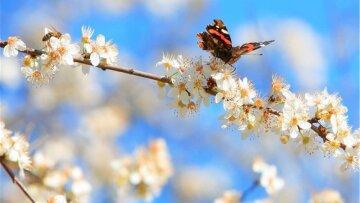 3 травня – яке сьогодні свято і чий День ангела