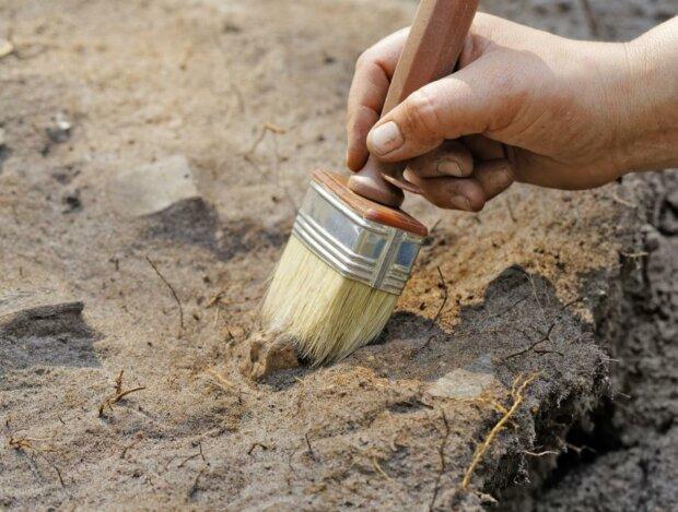 археологи, ученые