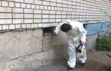 """У будинках Дніпра розкидали небезпечну отруту, кадри: """"Постійно ганяли і труїли..."""""""