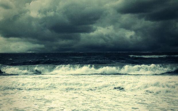 Азовское море отступило и выбросило живых существ: жуткие кадры