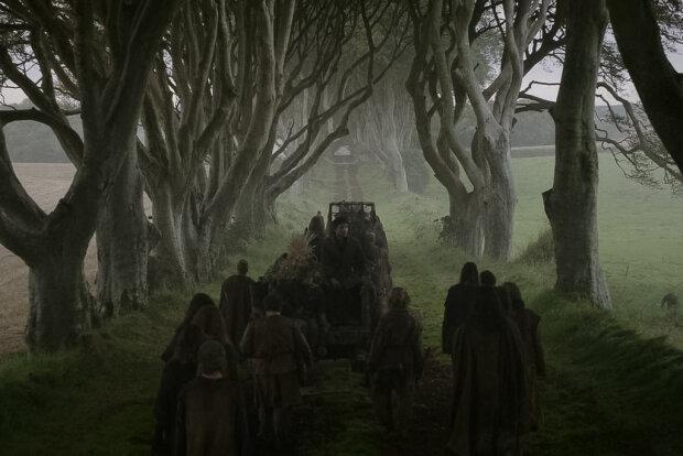 Ураган разнес знаменитую аллею из «Игры престолов» — фото