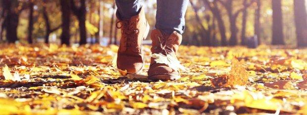 погода в ноябре, прогноз погоды на ноябрь 2018, осень, листья, прогулка