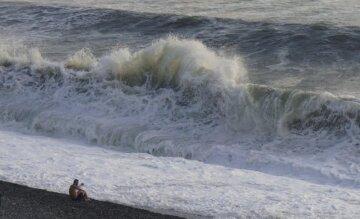 В Черном море засветились моржи: яркие кадры