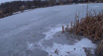 """""""З мужиком щось не так?"""": під Києвом дитину вивели на крихкий лід, щоб навчити кататися на ковзанах"""