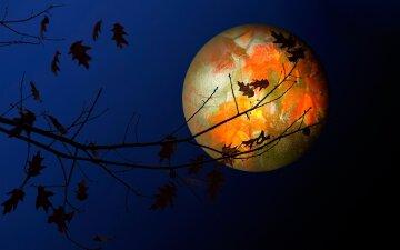 лунный календарь на ноябрь 2018, по