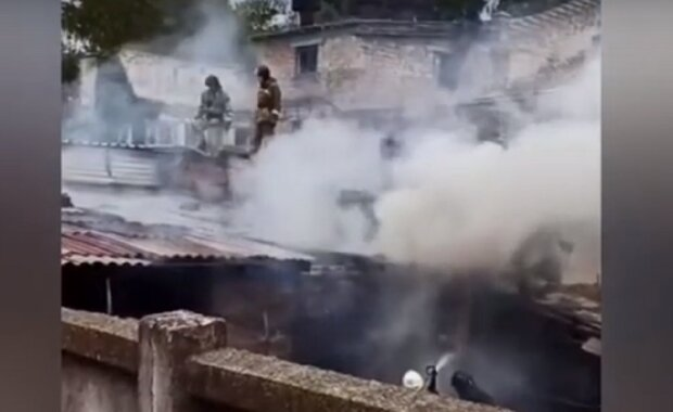 Выносили из огня животных: в Одессе вспыхнул пожар в приюте, кадры ЧП