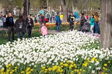 весна, украина, люди, погода