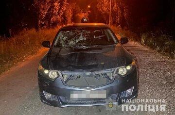 Пьяный водитель сбил семейную пару с маленьким ребенком: фото с места ДТП в Запорожье