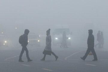 погода, туман, осень, зима