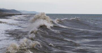 На Одесчине заметили редчайшее природное явление: «Должны быть в Африке», фото