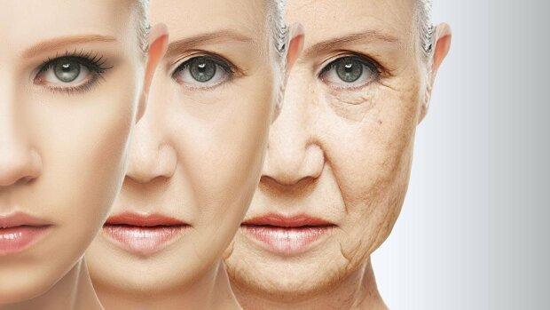 старение, старость