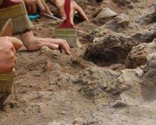 археологи, розкопки
