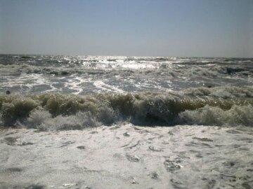 В Азовском море невозможно подойти к воде, отдыхающие встревожены: кадры напасти