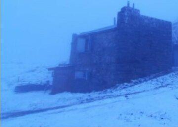 Середина червня вже: на українську землю обрушився сніг, фото